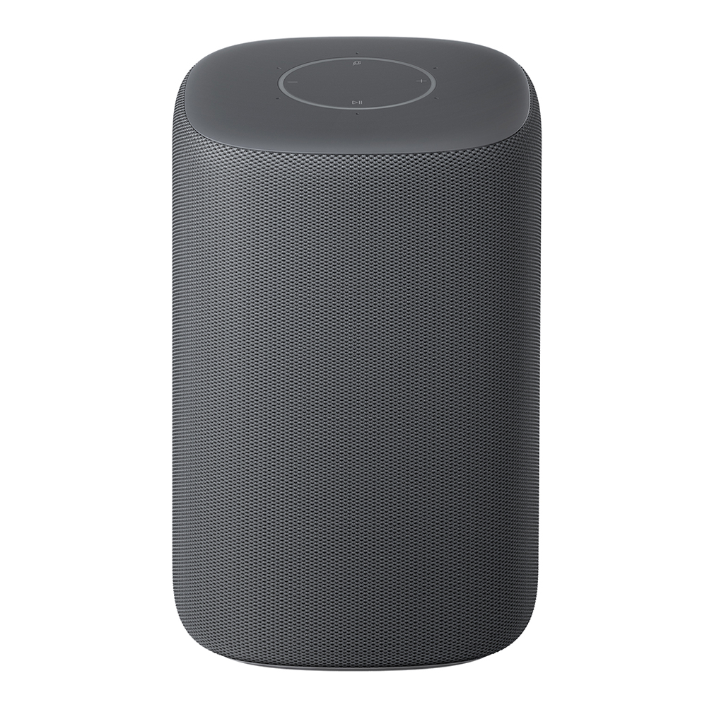 Xiaomi HD AI Wireless Bluetooth WiFi Speaker 360 Degree Surround Sound - Dark Gray