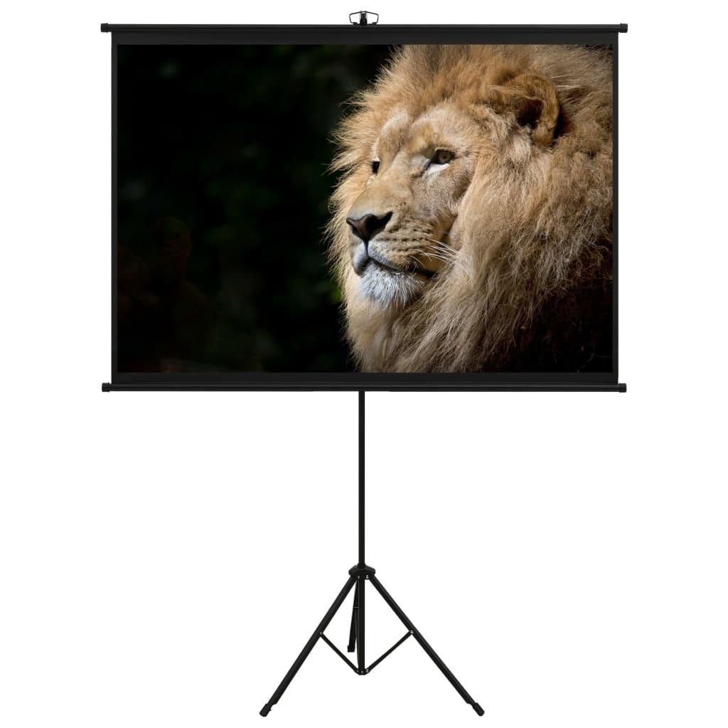 Проекционный экран со штативом 63 дюймов, 1: 1