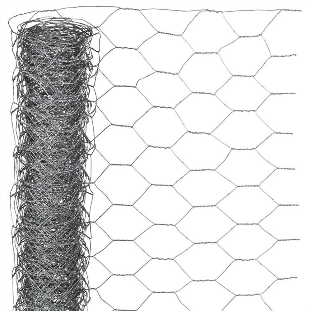 Acier galvanisé hexagonal de grillage de la nature 1x10 m 25 millimètres