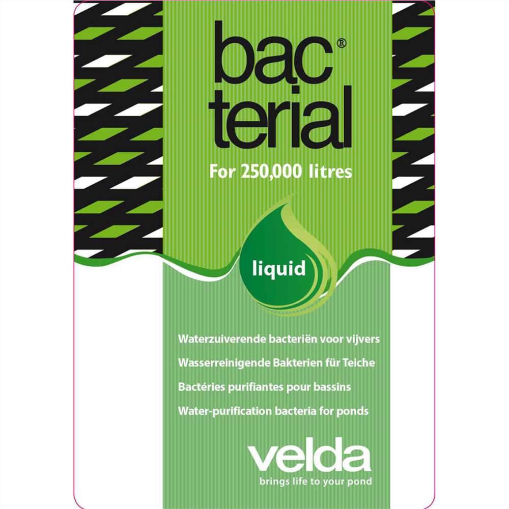 Velda Pond Balance Bacterial 2500 ml Liquide