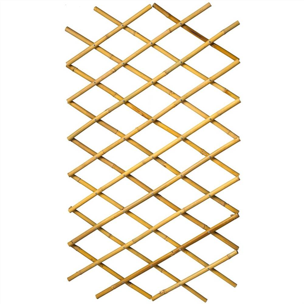 Treillis de jardin nature 45x180 cm Bambou 6040720